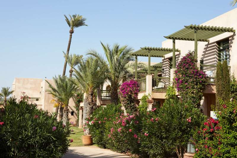 Large club med marrakech club 5